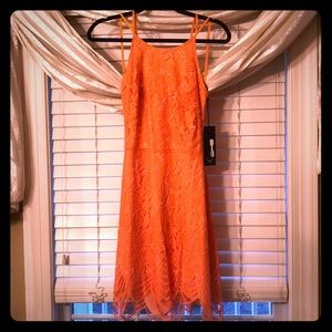 For love and lemons NWT lace orange cocktail dress